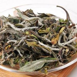 经常喝白茶都有哪些功效呢?