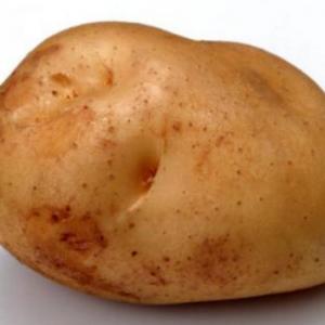 土豆的功效有哪些 土豆发芽还能吃么?