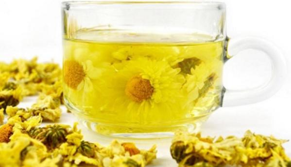 杭白菊的功效有哪些 哪些人不适合喝菊花茶?