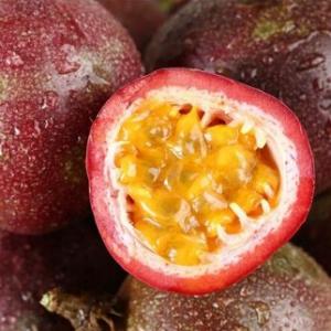 百香果的种植都需要注意哪些条件?