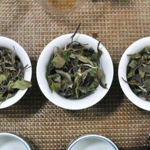 寿眉茶的冲泡都有哪些讲究