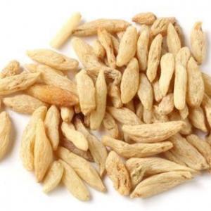 中药麦冬的功效与作用