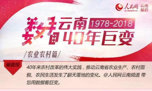 数看云南40年巨变·农业农村篇