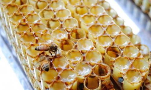 蜂王浆有什么功效