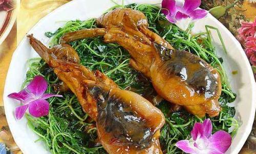 河豚鱼皮可以吃吗