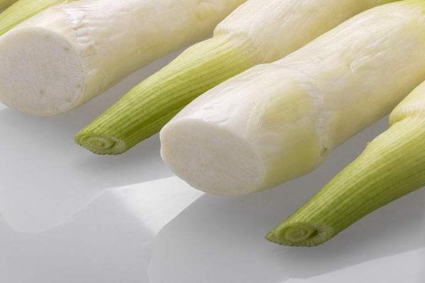 茭白和蒲菜有什么区别