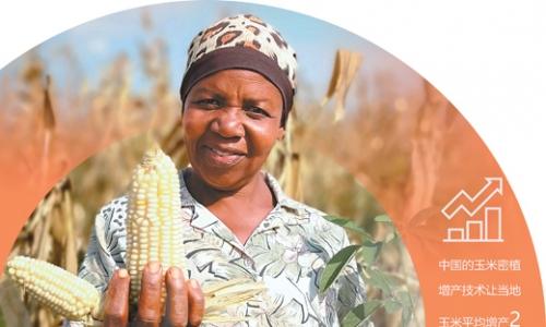 教非洲农民种粮食