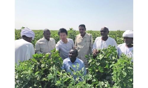 """""""一带一路""""农业合作迈向高质量"""