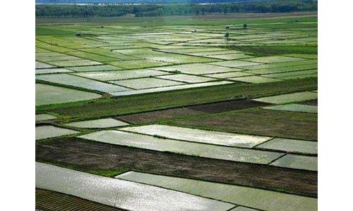黑龙江农产品质量安全全国居前