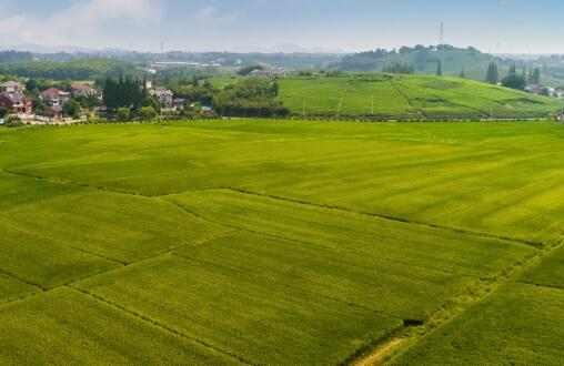 """截至2018年底河北土地流转达2983万亩承包田成了农民的""""活资产""""!"""