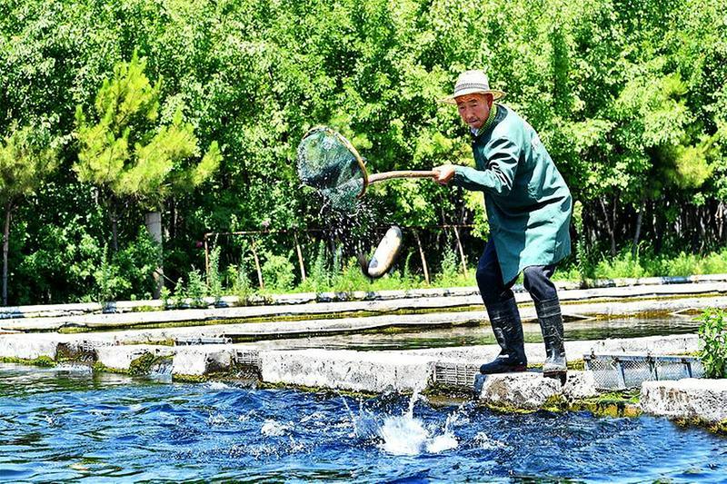 水产养殖促农增收