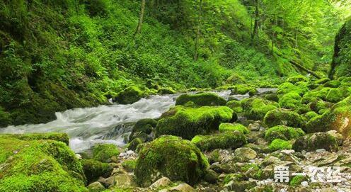 我国对生态大自然即将实行更大的保护措施