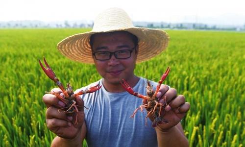 生态混养农民增收