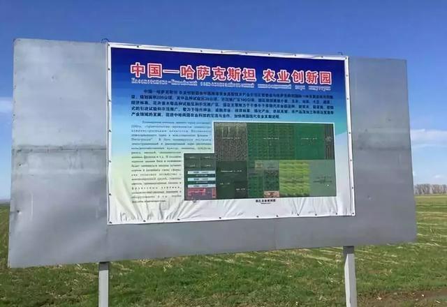 """杨凌:国际农业合作之花绽放""""一带一路"""""""