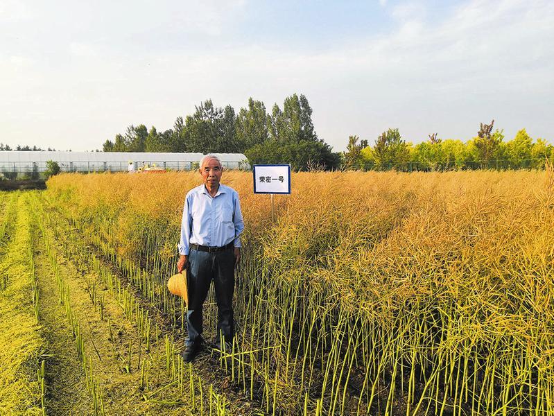 450万元!陕西省杂交油菜研究中心3个油菜新品种成功转让